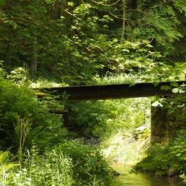 vorhandenes Brückenbauwerk 1